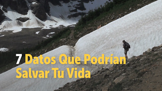 7 Datos Que Podrían Salvar Tu Vida - Video