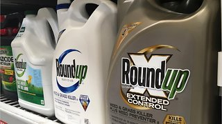 U.S. Court To Try Claims Roundup Weed Killer Caused Cancer