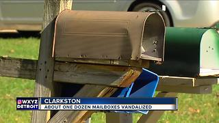 Vandals hit more than a dozen mailboxes in Clarkston subdivision - Video