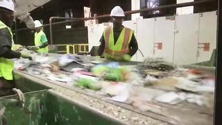 Hillsborough, Pinellas are great at recycling | Digital Short - Video
