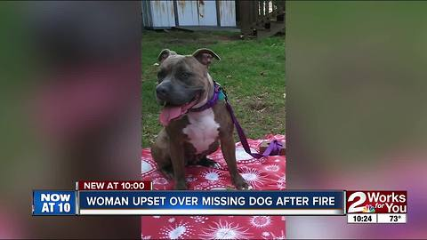 Tulsa family looking for dog housed by Red Cross volunteer
