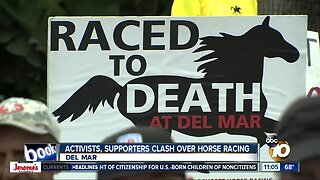 Activists, supporters clash over horse racing