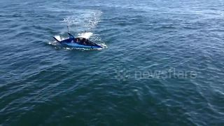 Bizarre robot shark filmed in San Diego, California - Video