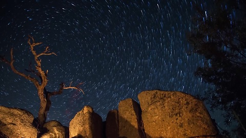 This night sky timelapse will leave you in awe