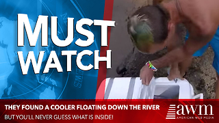 Campers Completely Freaked Out By Contents Of Cooler They Find Floating Down River - Video