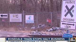 Rosedale CSX crossing frustrates businesses - Video