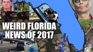 Here are the top weird Florida news stories of 2017 - Video