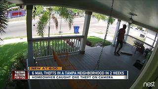 Tampa homeowner captures brazen mail theft on surveillance camera - Video