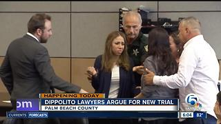 Dalia Dippolito defense team seeks new trial - Video