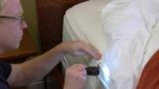 Bed Bug Inspection Tips - Video