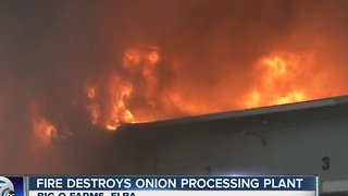 Fire destroys onion processing plant in Elba - Video
