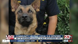 Local woman creates GoFundMe to get Bakersfield Police K-9 Officer a vest - Video