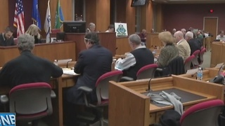 Concerns over open carry at council meetings - Video