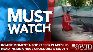 Insane moment a zookeeper places his HEAD inside a huge crocodile's mouth - Video
