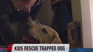 Girls help rescue dog from irrigation grate - Video