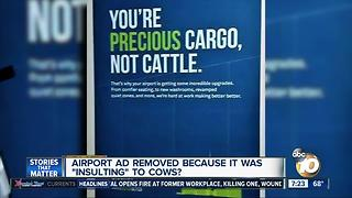 Airport sign insulting to cows? - Video