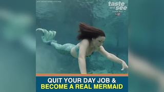 Weeki Wachee is looking for new mermaids | Taste and See Tampa Bay - Video
