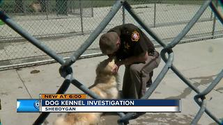 Former kennel owners charged in Sheboygan County dog deaths - Video