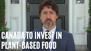 Trudeau Just Announced A $100 Million Investment Into Plant-Based Food In Canada