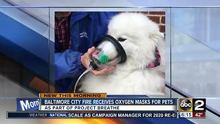 Baltimore City fire houses get oxygen masks for pets - Video