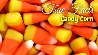 True Facts About The Candy Corn