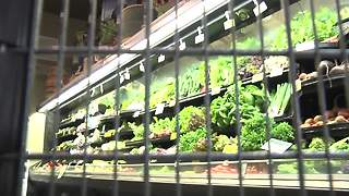 UA researchers finds energy dense foods may among women of normal weight - Video