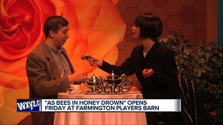 """""""As Bees in Honey Drown"""" opens Friday at Farmington Players Barn"""