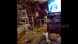 Dog manages to carefully navigate through house with huge stick