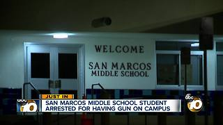 Student arrested, accused of bringing gun to school