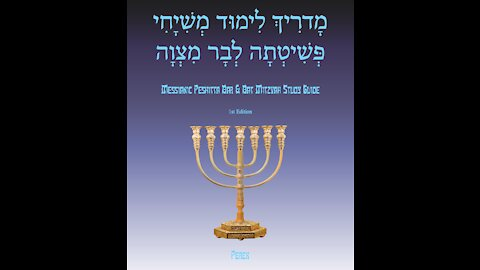 Bar Mitzvah Study Guide Deep Dive for Adults Week 19