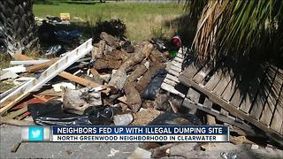 Clearwater neighbors want empty lot cleaned up - Video