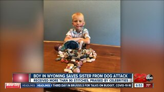 Boy in Wyoming saves sister from dog attack