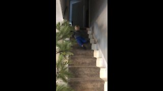 Happy holiday stair slide