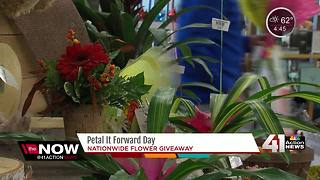 Florists giving away bouquets across the country - Video
