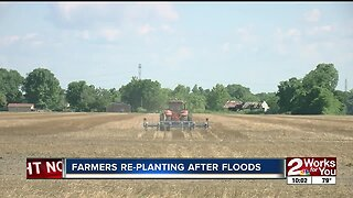 Farmers re-planting after floods