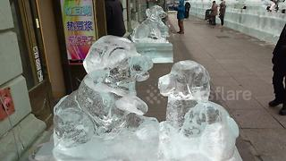 Intricate ice dog sculptures displayed at the world's largest winter fair - Video