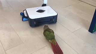 Parrot challenges robot vacuum over territorial dispute - Video