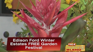 Fun Is In Bloom With A FREE Garden Festival 11/18/16 - Video