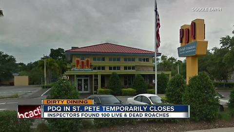 Dirty Dining: PDQ temporarily closes after inspectors see 100+ roaches all over the kitchen