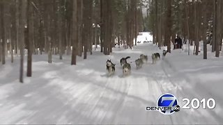 Denver7 Classic - Dog Sledding 2010