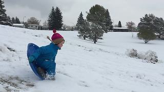Little Boy's Sledding Fail - Video
