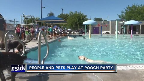 "12th Annual ""Pooch Party"" takes over Lakeview Park"