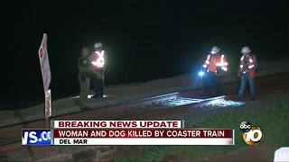 Woman and dog killed by Coaster Train - Video