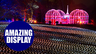 A beautiful festive lights display at the Birmingham Botanical Gardens