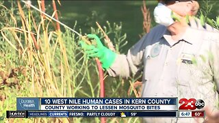 California Health: West Nile Virus a concern in Kern County after 11th case confirmed