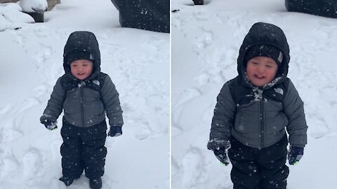 Toddler can't help but laugh every time a snowball is thrown