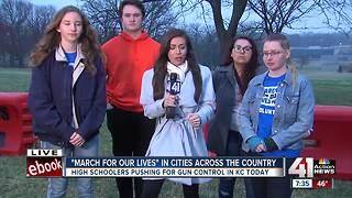 March For Our Lives at Theis PArk - Video