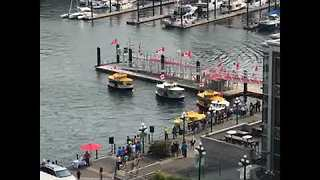 Timelapse of Boat Dance at Victoria Harbor - Video