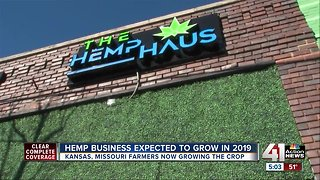 Hemp business expected to grow in 2019