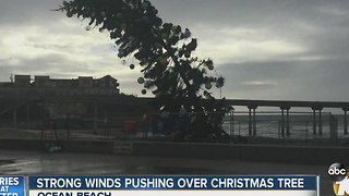 Strong winds pushing over Christmas Tree in Ocean Beach - Video
